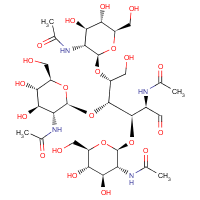 tetra-N-acetylchitotetraose