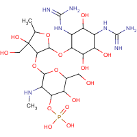 3''-phosphoryldihydrostreptomycin