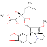 isoharringtonine