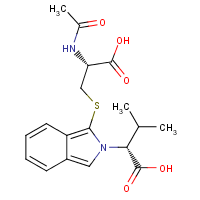 S-(2-(1-carboxy-2-methylpropyl)isoindole-1-yl)-N-acetylcysteine