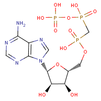 alpha,beta-methyleneadenosine 5'-triphosphate