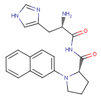 histidylprolyl-2-naphthylamide