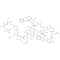 calcitonin gene-related peptide (19-37), t-butyl-Cys(18)-