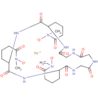 retrohydroxamate ferrichrome