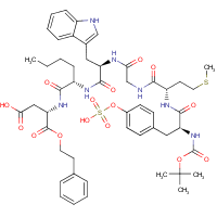 t-butyloxycarbonyl-(sulfo-Tyr)-Met-Gly-Trp-Nle-Asp 2-phenylethyl ester