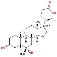 6-methylmurideoxycholic acid